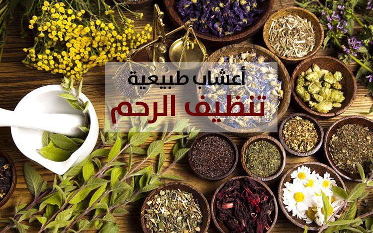 أعشاب طبيعية ووصفات تنظيف الرحم