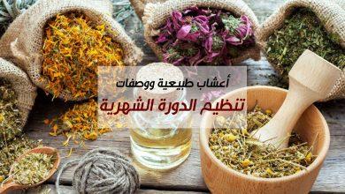 Photo of أعشاب طبيعية ووصفات تنظيم الدورة الشهرية