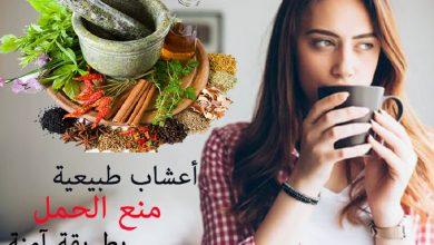 Photo of أعشاب منع الحمل بطريقة آمنة وفعالة