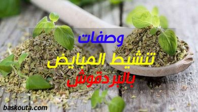 Photo of وصفات تنشيط المبايض بالبردقوش