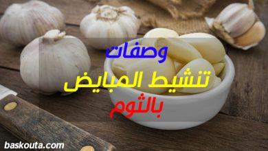 Photo of وصفات تنشيط المبايض بالثوم