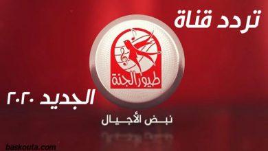 Photo of تردد قناة طيور الجنة Toyor Al Janah الجديد 2020 علي نايل سات والعرب سات