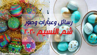 Photo of رسائل وعبارات وصور تهنئة بمناسبة شم النسيم 2020 باللغة العربية والإنجليزية