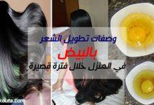 Photo of وصفات تطويل الشعر بالبيض في المنزل خلال فترة قصيرة