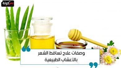 Photo of وصفات علاج تساقط الشعر بالأعشاب الطبيعية