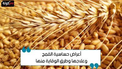 Photo of أعراض حساسية القمح وعلاجها وطرق الوقاية منها