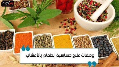 Photo of وصفات علاج حساسية الطعام بالأعشاب